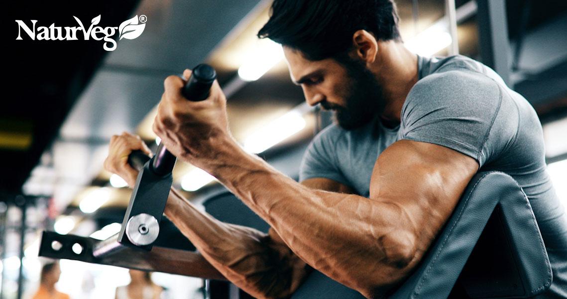 massa muscolare vegetariani