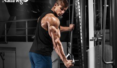 bodybuilder vegano